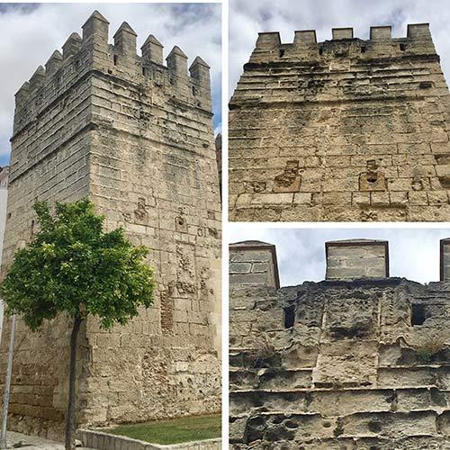 Cerca del castillo de San Marcos